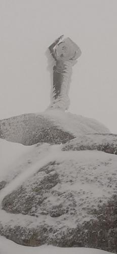 Concurso Ruta Raquetas (Navacerrada) 25/1/20